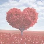 Heart Feb16