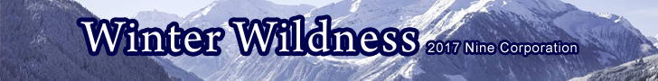 WinterWildness2017-worldbanner copy