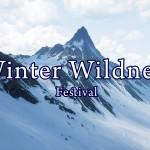 WinterWildness copy